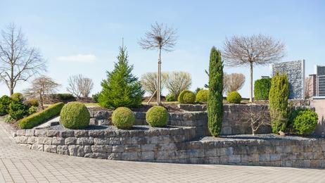 Landschaftsarchitekten arbeiten mit Pflanzen statt Beton.